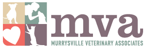 Murrysville Veterinary Associates